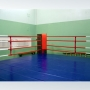 Ринги боксерские на помосте разборные